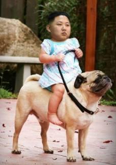kimjongdog